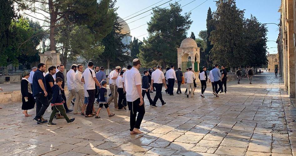 Dalam sepekan, 610 orang Israel masuk ke Masjid Al Aqsa